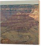 Soaring Through The Canyons Wood Print