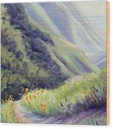 Soberanes Canyon  Wood Print