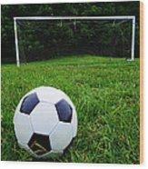 Soccer Ball On Field Wood Print