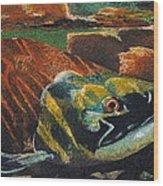 Sockeye Wood Print