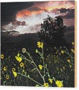 Socorro Sunset Wood Print