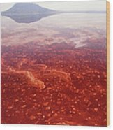 Soda And Algae Formation On Lake Natron Wood Print