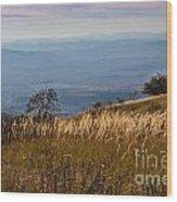 Sofia Valley From Vitosha Mountain October Early Twilight Wood Print