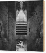 Soft Asylum Wood Print by Bob Orsillo