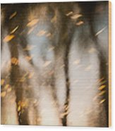 Soft Autumn Wood Print