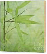 Soft Bamboo Wood Print by Priska Wettstein