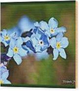 Soft Blue Wood Print