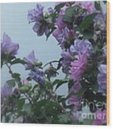 Soft Blues And Pink - Spring Blossoms Wood Print