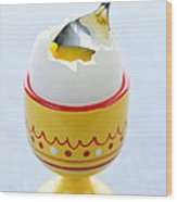 Soft Boiled Egg In Cup Wood Print by Elena Elisseeva