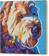 Soft Coated Wheaten Terrier - Max Wood Print