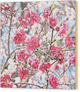 Soft Colors Of Spring Wood Print