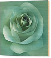 Soft Emerald Green Rose Flower Wood Print by Jennie Marie Schell