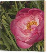 Soft Floral Wood Print