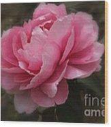 Soft Focus Pink Wood Print