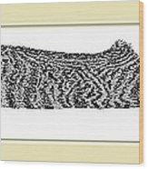 Soft Kitty Warm Kitty Wood Print