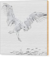Soft Landing Wood Print