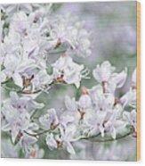 Soft Lavender Dancing Azalea Flowers Wood Print