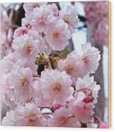 Soft Pink Blossoms Wood Print