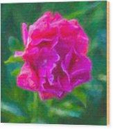 Soft Pink Peony Wood Print