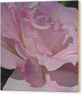 Soft Shade Of Pink Wood Print