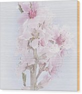 Soft Spring Wood Print