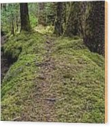 Soft Trail Wood Print
