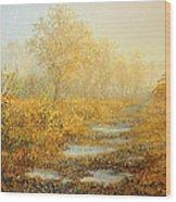 Soft Warmth Wood Print by Kiril Stanchev