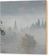 Soft Whisper Wood Print