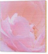 Softness Of A Rose Wood Print