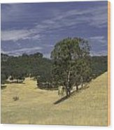 Open Spaces Wood Print