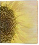 Solar Flare Wood Print