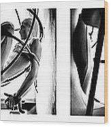 Solar Jail Triptych Wood Print