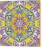 Solar Sunstar Wood Print by Derek Gedney