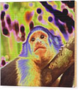 Solarized White-faced Monkey Wood Print