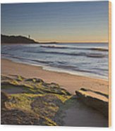 Soldiers Beach Wood Print by Steve Caldwell