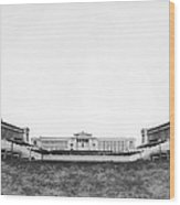 Soldiers' Field And Museum Wood Print