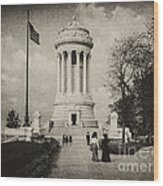 Soldiers Memorial - Ny - Toned Wood Print
