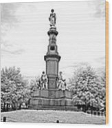 Soldier's Monument - Gettysburg - Irbw Wood Print
