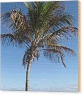 Sole Palm Wood Print