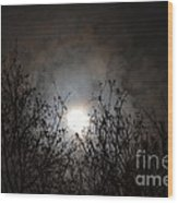 Solemn Winter's Moonlight Wood Print