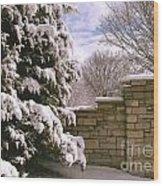 Solid Winter Wood Print