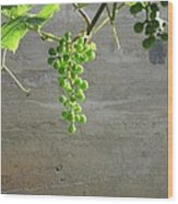 Solitary Grapes Wood Print by Deb Martin-Webster