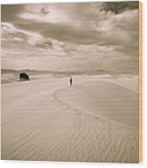 Solitary Journey Wood Print