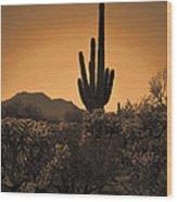 Solitary Saguaro Wood Print