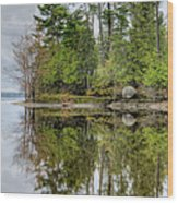 Solitude At Pinheys Point Ontario Wood Print by Rob Huntley