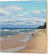 Solitude Beach Wood Print