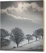 Solitude Of Coldness Wood Print