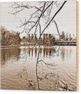 Solitude Wood Print by Thomas  MacPherson Jr