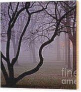 Solitudes Glow Wood Print