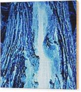 Solo Blue Wood Print